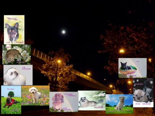 14-12blog.jpg