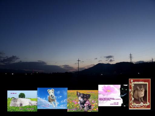 18-01blog.jpg