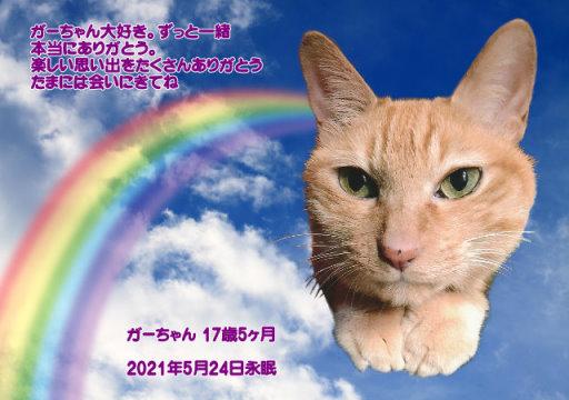 210525oomori-gaa-tyan.jpg
